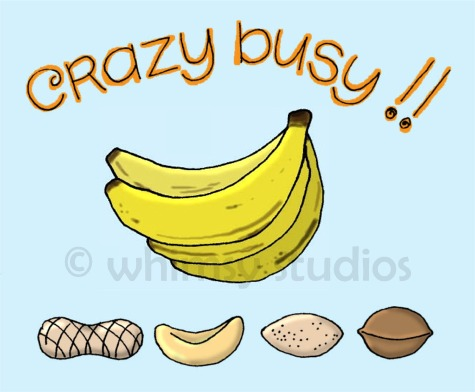 Crazy busy nuts