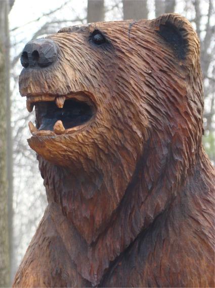 Ben the bear side profile