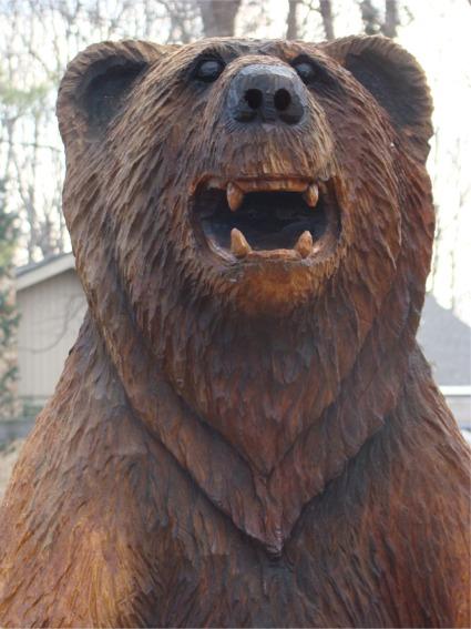 Ben the bear portrait