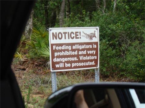 Gs gator sign