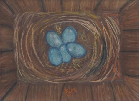 K birds nest