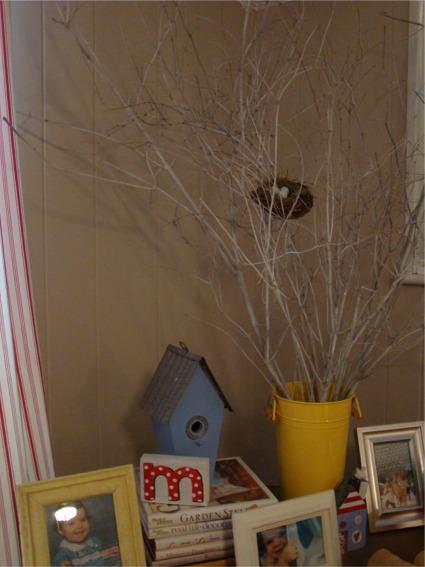 Nest in fr tree 2