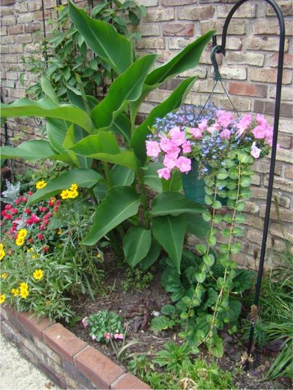 Moms garden 2