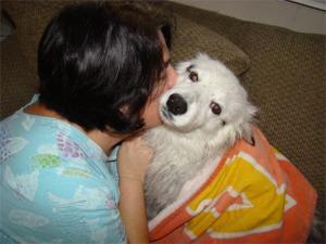 Snow wet dog kiss