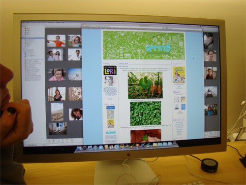 Chicago apple blog