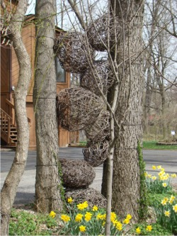 Twig balls1