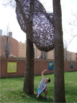 Twig balls2