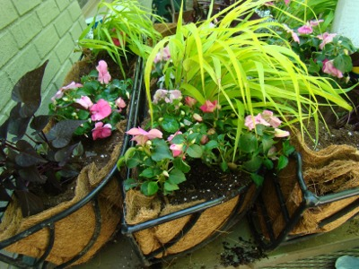 Mom flower boxes1