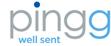 Pingg small_logo