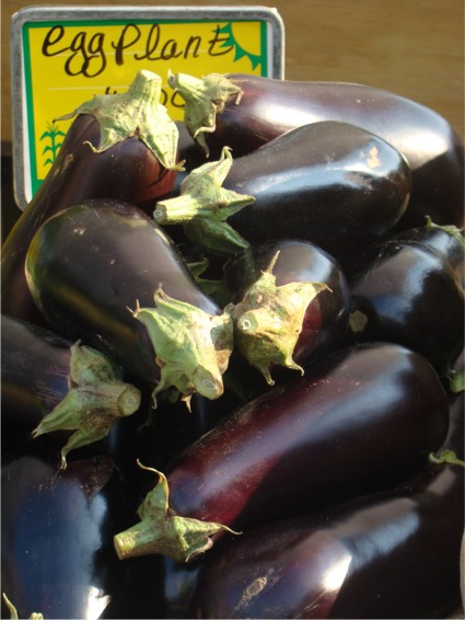 Fm eggplants