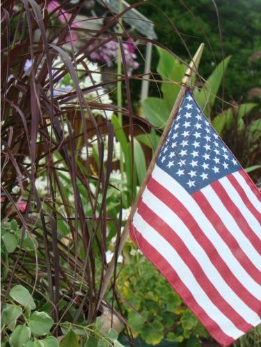 July 4th flag