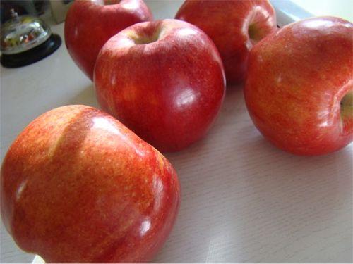 Caramel apples 1