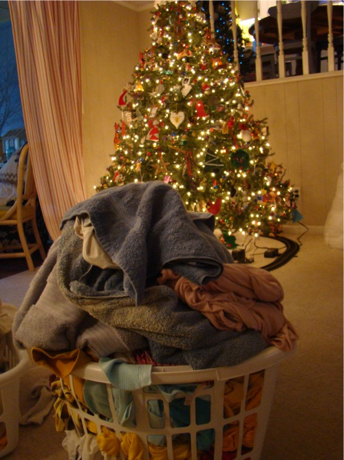 Laundry tree