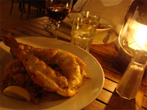 Tc lobster tail
