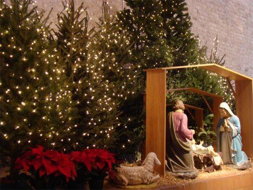 Nativity 2011