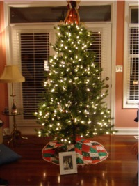 Tree cecil