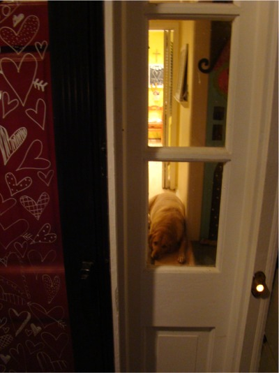 Heart door watch dog