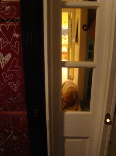 Heart door watch dog