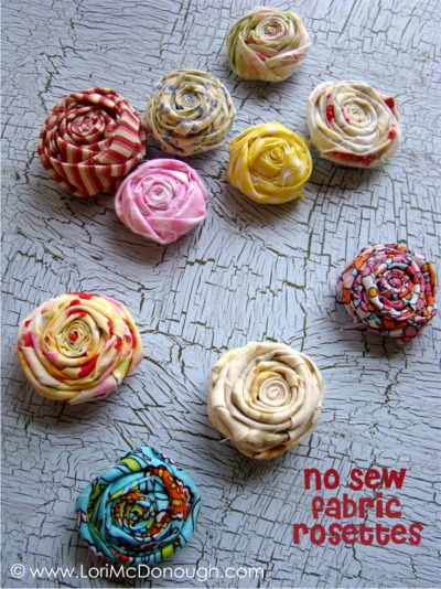 Cc sweet rosettes photo