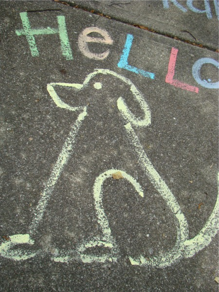 Sidewalk paint dog