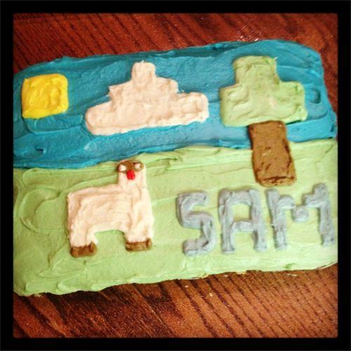 Sam minecraft cake