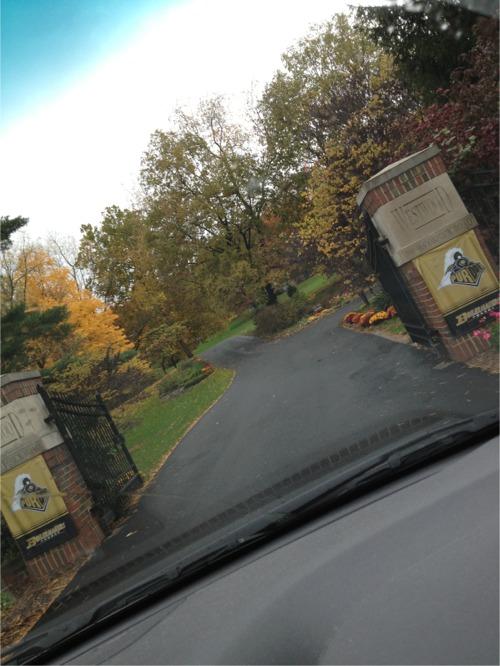 Westwood gates