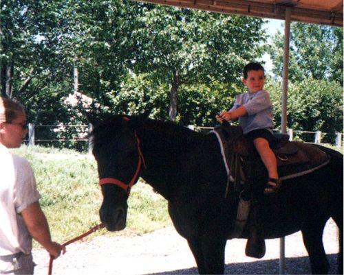 Little riley horse