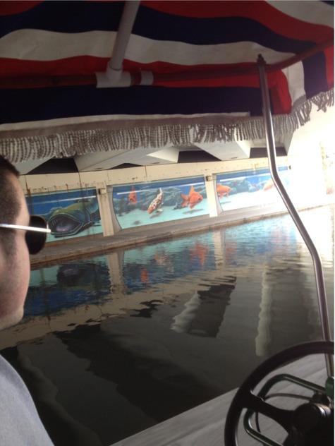 Canal murals