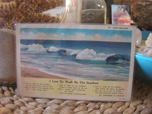 Vintage cape cod post card