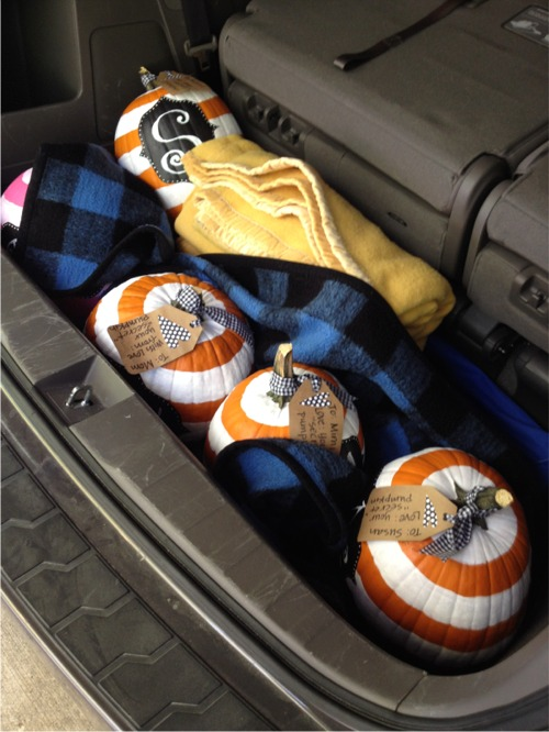 Pumpkins in the trunk