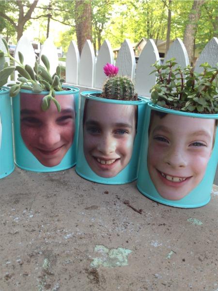 Face pots s m c