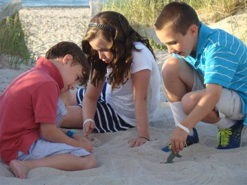 Cape cod the littles