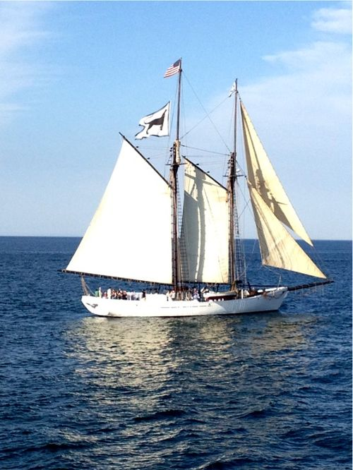 Cape cod sailboat