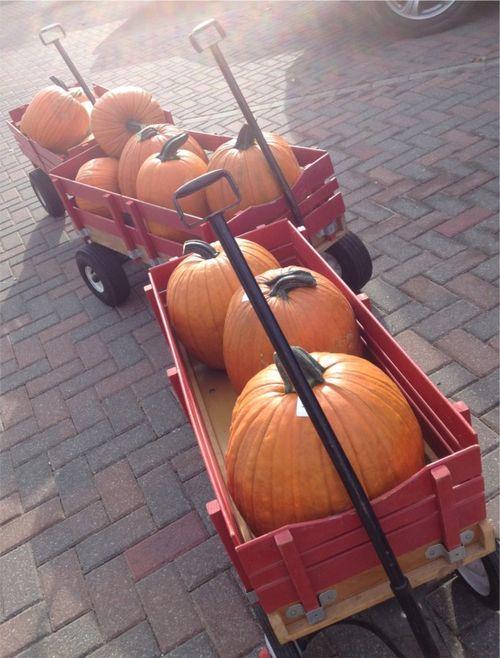 Pumpkin wagons