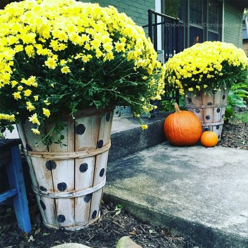 2015 oct front porch