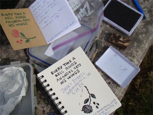 Letterboxing_zuzus_petals