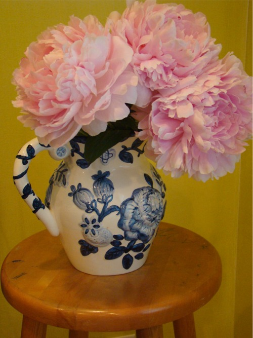 Peonies_in_pitcher