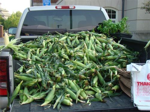Truck_of_corn